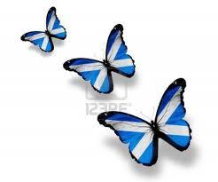butterfly scot